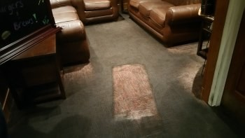 while carpet cleaning SJS