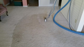 Carpet Cleaning by Superior Janitorial Service, LLC in Greensboro, NC